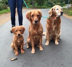 3 generationer Currie, Greta och Astrid